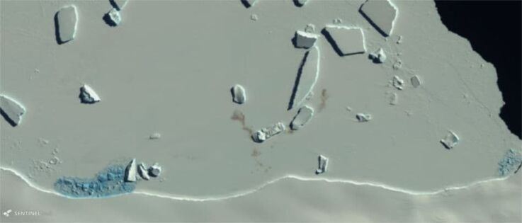 Die rotbraunen Guano-Flecken auf dem Eis zeigen die Existenz einer Kaiserpinguinkolonie. Bild vom