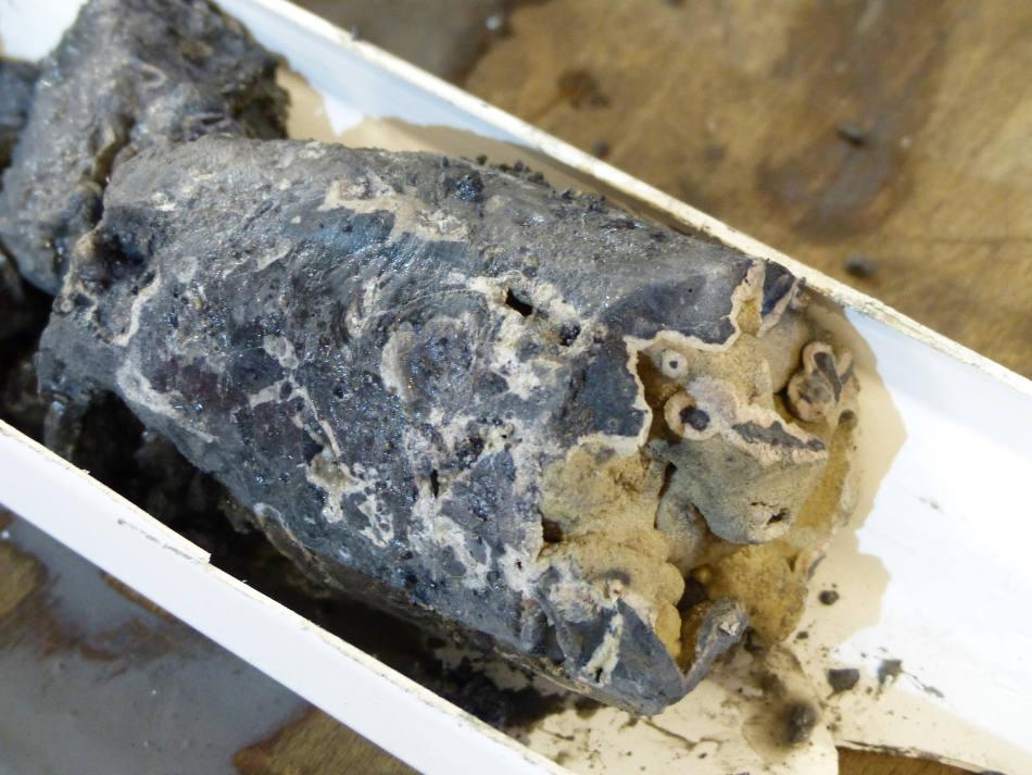 Teil eines Bohrkerns vom Vestnesa-Rücken mit gut sichtbarem Seep-Karbonat.Foto: MARUM – Zentrum für Marine Umweltwissenschaften, Universität Bremen
